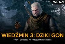 feat- wrazenia z wiedzmin 3 dziki gon -GGK