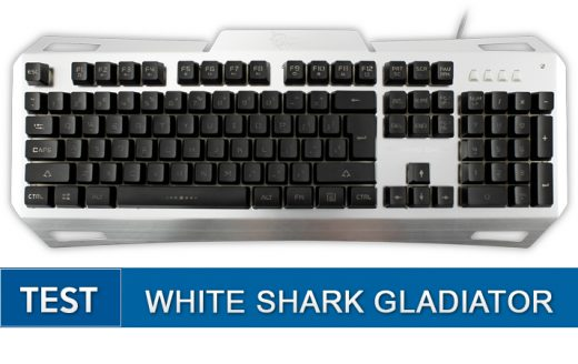 feat -white-shark-gladiator