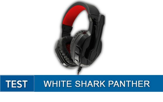 feat -white-shark-panther