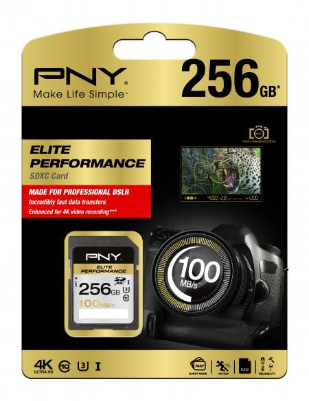 new -pny-SD-256GB-Elite-Performance